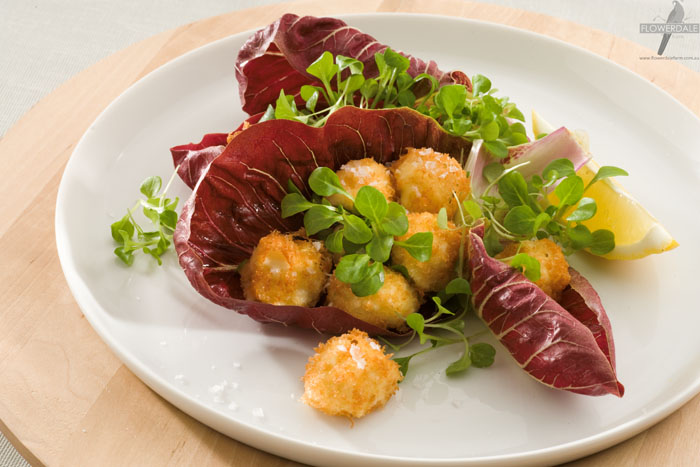 Crumbed Bocconcini Balls with Mache and Radicchio Salad