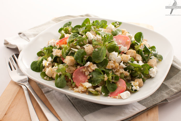 Mache Salad with Croutons, Radish and Feta