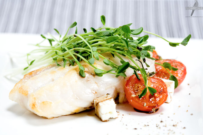 Pan-fried Rockling Fillet with Feta, Tomato and Snow Pea Shoot Salad