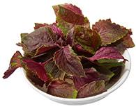 Foliette Petite Leaves