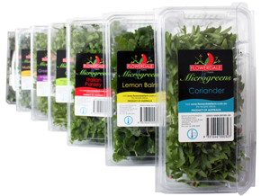 Cut Cress Punnets