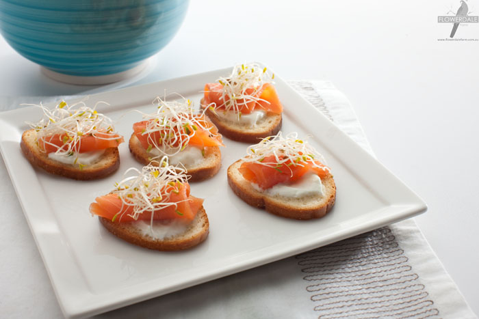 Smoked Salmon and Onion Alfalfa Hors D'oeuvres